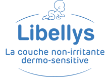 Logo libellys site
